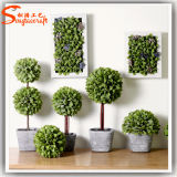 Hot Sale Indoor Artificial Mini Topiary Grass Ball