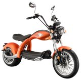 2 Wheel EEC Coc Aproval Road 3000W Powerful Electric Scooter for Adults