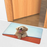 Wholesale Custom Indoor Outdoor Doormat Floor Mat Non-Slip Shaggy Bathroom/Living Room Washable Carpet