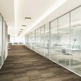 Shaneok Glass Office Partition with Tempered