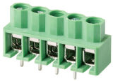 PCB Solder Terminal Blocks with 10.0/5.0mm Pitch UL Ce Certified (WJ166)