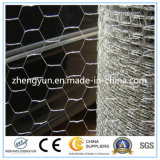 China Cheap Stainless Steel Hexagonal Animal Catching Nets Wire Netting
