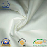 100% Cotton/CVC Hotel/Hospital/Home Satin Fabric