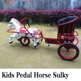 New Amusement Park Kids Pedal Horse Cart, New Design Carousel Cart