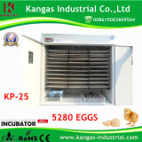 5280 Eggs Energy Saving Automatic Incubator (KP-25)