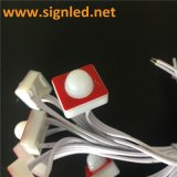 High Quality LED Pixel 5years Warranty DC5V with 3m Tape