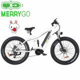 48V 1000W Fat E Ebike Mountain Electric Bicycles