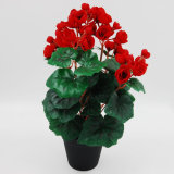 New Product Artificial Flower Rose Begonia