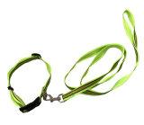 Adjustable Pet Collars Dog Chain Pet Leash Pet Belt
