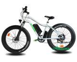 Wholesale Electric Bike 750W/48V Powered Hub Motor E Bike Fat Electric Bicycle Brushless Motor