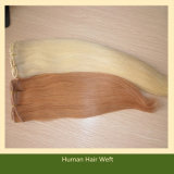 Brown Human Hair Extension 100% Indian Human Hair (ZYWEFT-120)