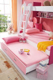 Best-Selling Colorful Wooden Bunk Bed (HC802)