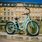 Mountain Electric Bike/Bikes/Ebike