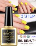 UV Gel Nail Polish Colorful Art Nail Polish with Free Sample