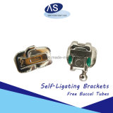 Dental Orthodontic Damon Q Style Self Ligating Brackets with All Bracket Can Hooks