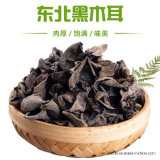 Dried Cloud Ear with Good Quality