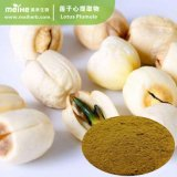 Lotus Seed Extract