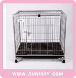 Spc-4000 Popular Luxury Metal Large Pet Cages Outdoor Wire Mesh Big Dog Cages for Sale