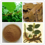 Plant Extract Male Enhancement Steroids Pure Icariin Powder / Epimedium489-32-7