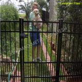 Ornamental Steel Fence Gate/ Barrier Fence Gate (XM-G11)