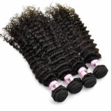 Factory Wholesale Price 100% Kinky Curl Virgin Indian Human Hair Extensions