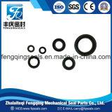 Bulldozer, Hydraulic Equipment NBR Psd, PP, Pz, EU, Dk, Z8 Pneumatic Seal