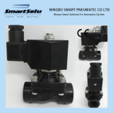 Smart High Quality (2W160-15p) 2W Series Solenoid Valve