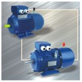Electric AC Motor with Competitive Price