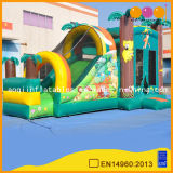 Inflatable Bouncer& Slide (AQ169)