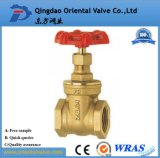 200 Wog, 300 Wog Brass Threaded Gate Valves for Oil