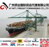 Cheap Ocean Freight Shipping to Chile