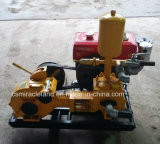 Bw 160 Simplex Piston Mud Pump