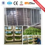 Automatic Seed Sprouting Machine Price