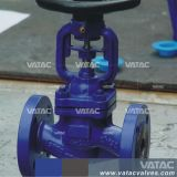 Bellow Sealed Globe Valve with RF Ends
