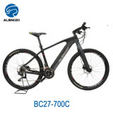 Electric Enduro, Mountain Ebike Central Motor Adult Electric Motorcycle Ebike