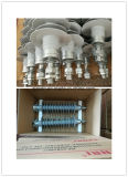 Hv (high voltage) Polymer Pin Type Insulator 36kv 12.5kn