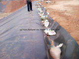 Waterproof Liner HDPE Geomembrane Cheap Price for Pond