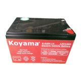 Koyama 12V 14ah Electric Vehicle Battery 6-Dzm-14