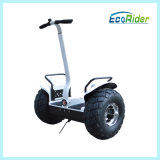Beach 2000W Electric Chariot 2 Wheel Electric Scooter with Handle
