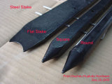Nail Steel Stakes with Nail Holes All Size (ZKJ)