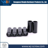 Customized Carbon Steel Black E-Coating Hollow Pipe Fastener