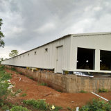High Quality Steel Frame Poultry House and Chicken Farm