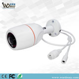 Fish-Eye 130degree 960p IR Waterproof Web IP Camera