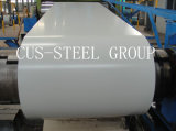 Color Coated Galvanzied Steel Plate/Prime Prepainted Steel Coil