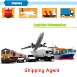 Shenzhen Shipping Agent in China to USA by Fast DDP Sea Air Cargo Door to Door Shipping