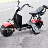 Powerful Green Electric Car with 01- 60V 1500watt Brushless Motor