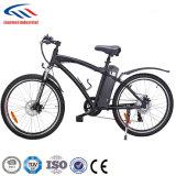 500W 48V USA Used Bike Wholesale Electric Bike Mountain Bike