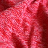 Loop Gagt Knit Fabric with Antipilling