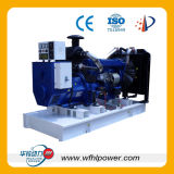 Natural Gas Electricity Generator