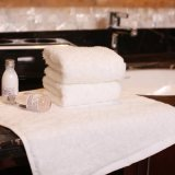 Hotel Collection 100% Cotton Reasonable Price SPA Towel (JRD301)